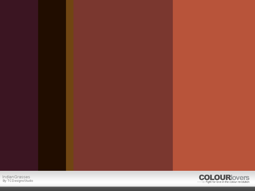 http://www.colourlovers.com/wallPaper/1024x768/pw/863439/COLOURlovers.com-IndianGrasses.png